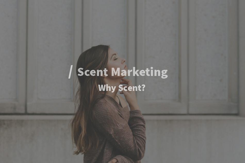 Scent marketing giúp xử lý mùi khó chịu